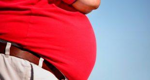 Obesidad y memoria